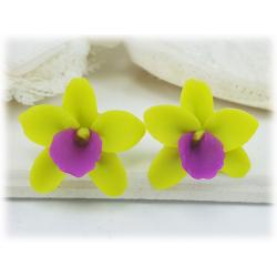 Green Orchids Stud Earrings